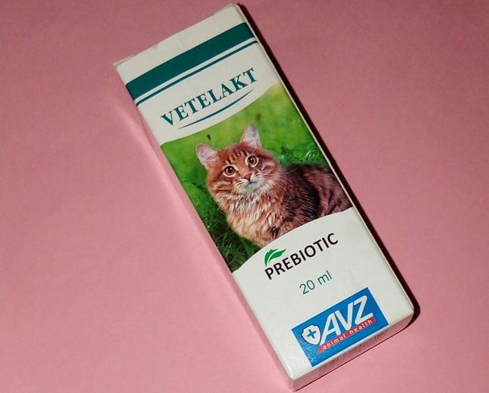 Ветелакт пробиотики для кошек