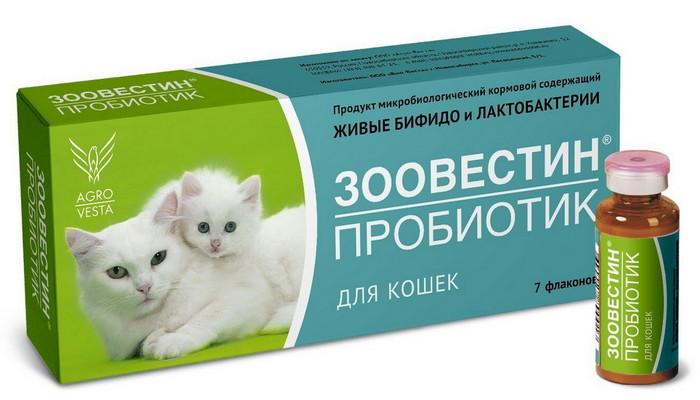 пробиотики для котят