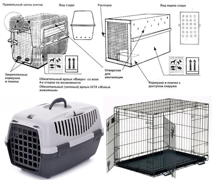 размер переноски для кошек