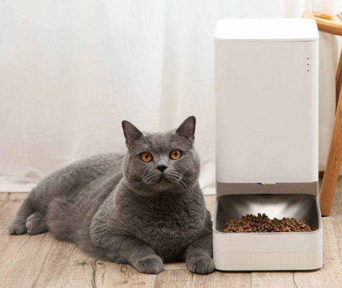 кормушка для кошек xiaomi