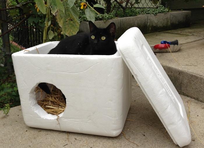 уличные домики из пенопластак для кошек