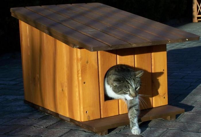 будка для кошек на зиму из вагонки